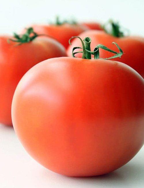 Salad Tomatoes.
