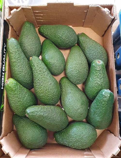 Avocadoes.