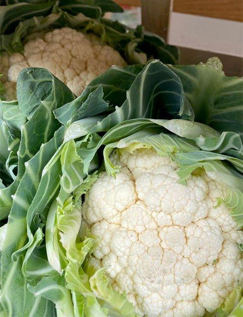 Norfolk Cauliflower.