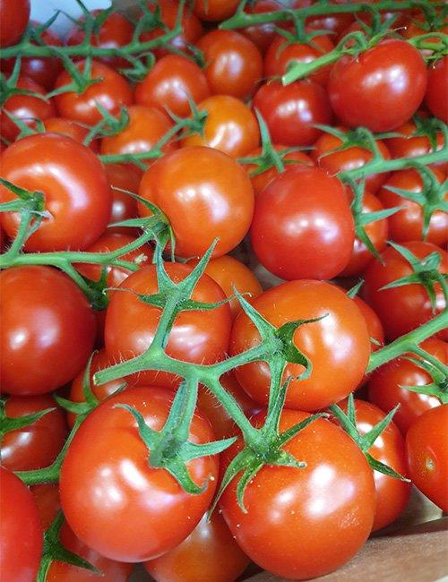 Tomato (on the Vine).