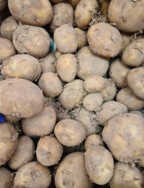 25kg Sack of Potatoes - Red or White.