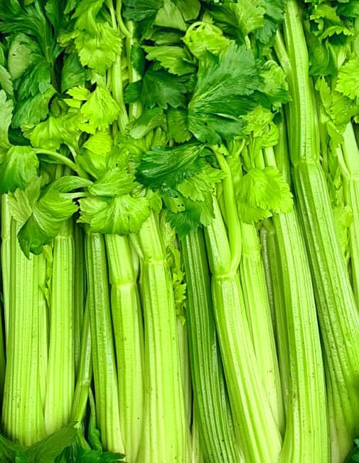 FenLand Dirty Celery